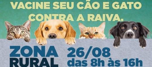 Campanha de vacinação antirrábica para cães e gatos começa dia 26 de agosto